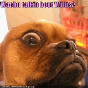 Wachu talkin bout Willis?
