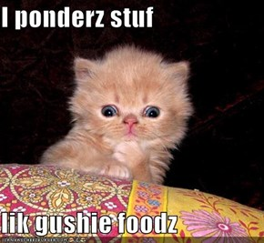 I ponderz stuf  lik gushie foodz