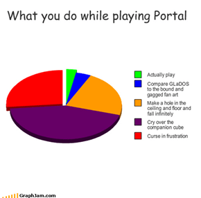 What you do while playing Portal