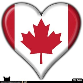 Happy Canada Day Every Buddy! . . . . . . . . . . . . . . . . . . . . .