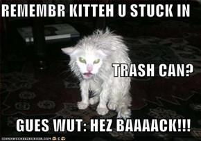 REMEMBR KITTEH U STUCK IN TRASH CAN? GUES WUT: HEZ BAAAACK!!!