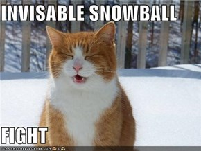 INVISABLE SNOWBALL  FIGHT