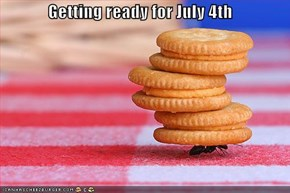 Getting ready for July 4th