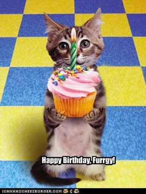 Happy Birfday Furrgetmenot!