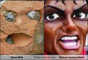 Stone Wall Totally Looks Like Michael Jackson Model