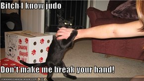 Bitch I know judo   Don't make me break your hand!
