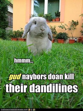 Disappoink bunneh sez