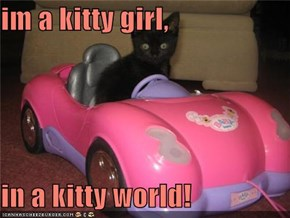 im a kitty girl,  in a kitty world!