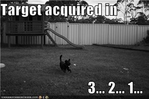 Target acquired in  3... 2... 1...