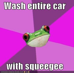 Wash entire car  with squeegee