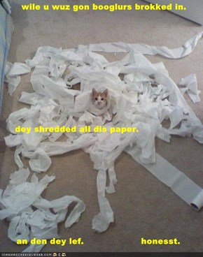 wile u wuz gon booglurs brokked in.       dey shredded all dis paper.  an den dey lef.                    honesst.