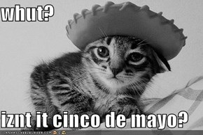 whut?  iznt it cinco de mayo?