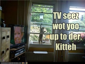 Televisions are so nosey...