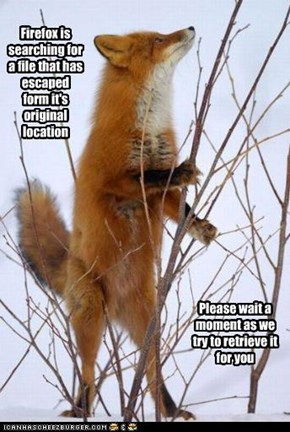 Firefox Searches
