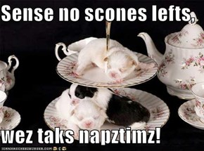 Sense no scones lefts,  wez taks napztimz!