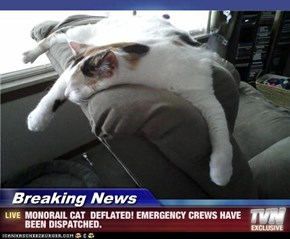 Breaking News - MONORAIL CAT  DEFLATED! EMERGENCY CREWS HAVE BEEN DISPATCHED.