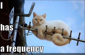 I has a frequency
