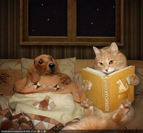 Goggies R Owr Friends: Bedtime Story