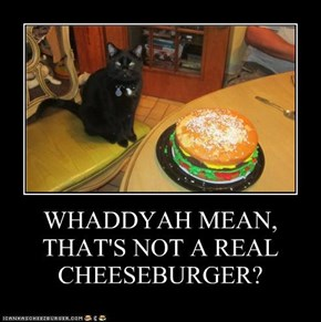 WHADDYAH MEAN, THAT'S NOT A REAL CHEESEBURGER?