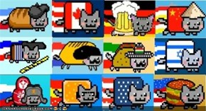 MemeCats: Nyan Cats From Around the World