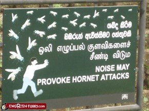 Then Again, What DOESN'T Provoke Hornet Attacks?