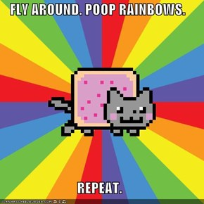 FLY AROUND. POOP RAINBOWS.  REPEAT.