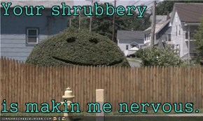 Your shrubbery  is makin me nervous.