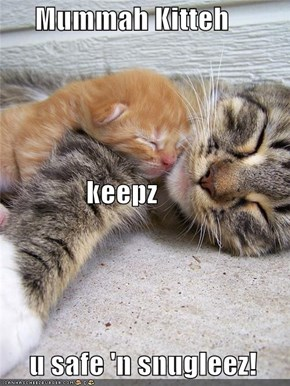 Mummah Kitteh                keepz       u safe 'n snugleez!