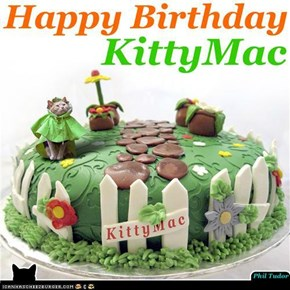 Birthday Cake for Kittymac! . . . . . . . . . . . . . . . . . . . . . . . . . . . . . .