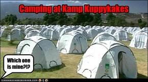 It's In-tents!!