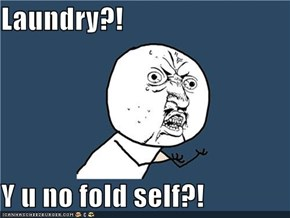 Laundry?!  Y u no fold self?!