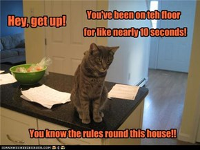 Hygenic Kitteh is on your case!!