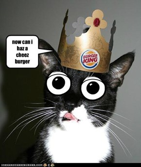 now can i haz a           cheez         burger