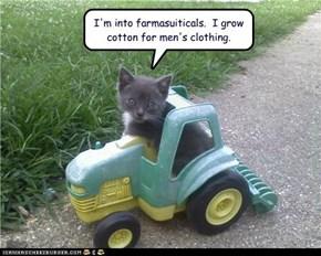 I'm into farmasuiticals.