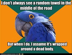 Paranoid Parrot: The Most Interesting Paranoid Parrot