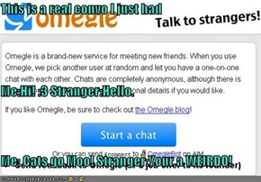 This is a real convo I just had Me:Hi! :3 Stranger:Hello. Me: Cats go Moo! Stranger:Your a WEIRDO!