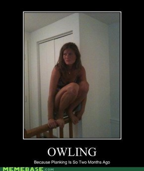 Owling, the new Planking