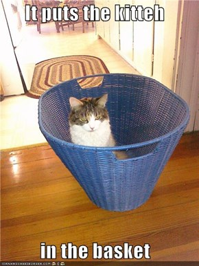 It puts the kitteh  in the basket