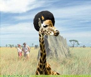 Giraffro