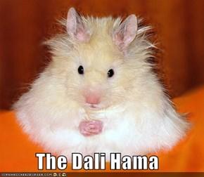 The Dali Hama