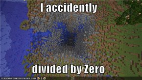 I accidently  divided by Zero