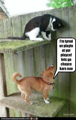 I'm tyredov playinat yur playce! lets gochaycekars nao