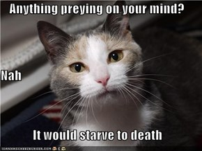 Anything preying on your mind? Nah It would starve to death