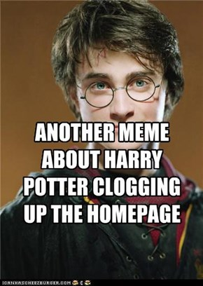 POTTER NO-MORE