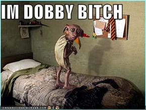 IM DOBBY BITCH
