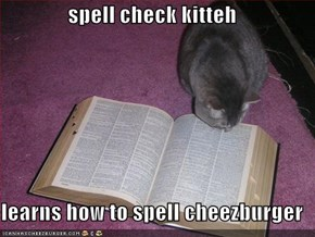 spell check kitteh  learns how to spell cheezburger