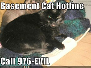Basement Cat Hotline  Call 976-EVIL