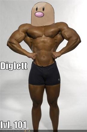 Diglett lvl. 101