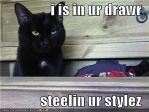 i is in ur drawr  steelin ur stylez