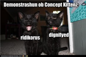Demonstrashun ob Concept Kittenz: